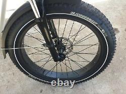 2018 Rad Rover Electric Fat Tire Bike /48 Volt 750 Watt