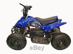 CRAZY QUADS 1000 Watt Electric Children's 36 Volt ATV Quad Bike Blue & Black